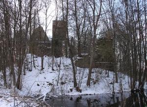 Burgruine im Winter_4